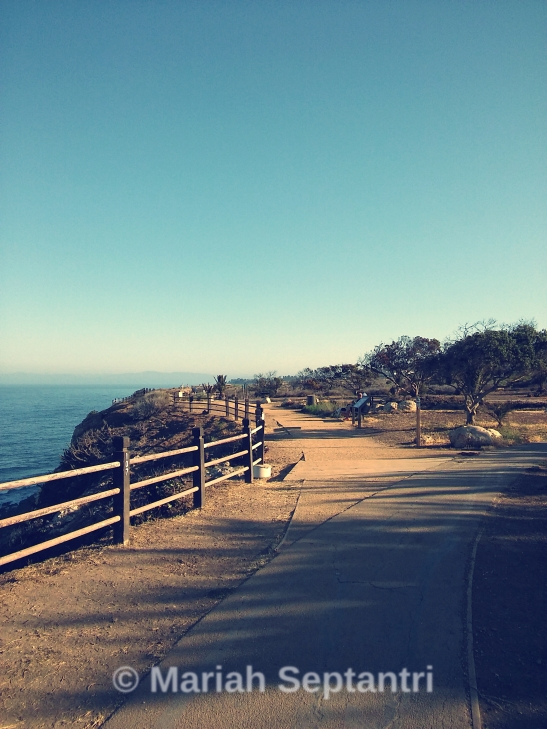 point-vicente-trail1